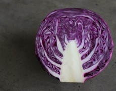 Color Study: Red Cabbage Purple