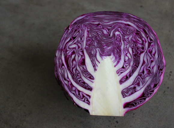 redcabbage2